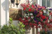 avon_hotel_exterior_big