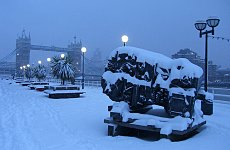 Transport Makes Comeback after Record Snowfall.