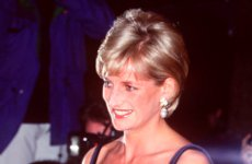 Princess Diana would have loved grandchildren.