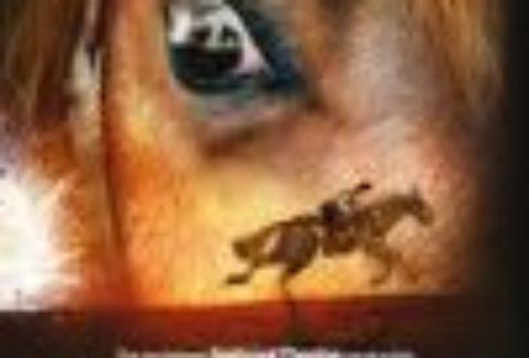 War Horse: Salford, Lyric Theatre – London Theatre Tickets