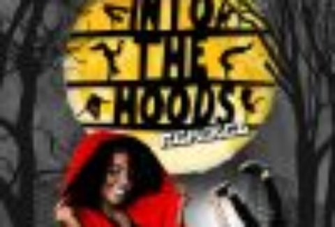 Zoo Nation: Into the Hoods, Peacock Theatre – London Theatre Tickets