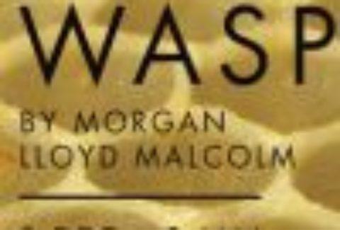 The Wasp, Trafalgar Studio Two – London Theatre Tickets