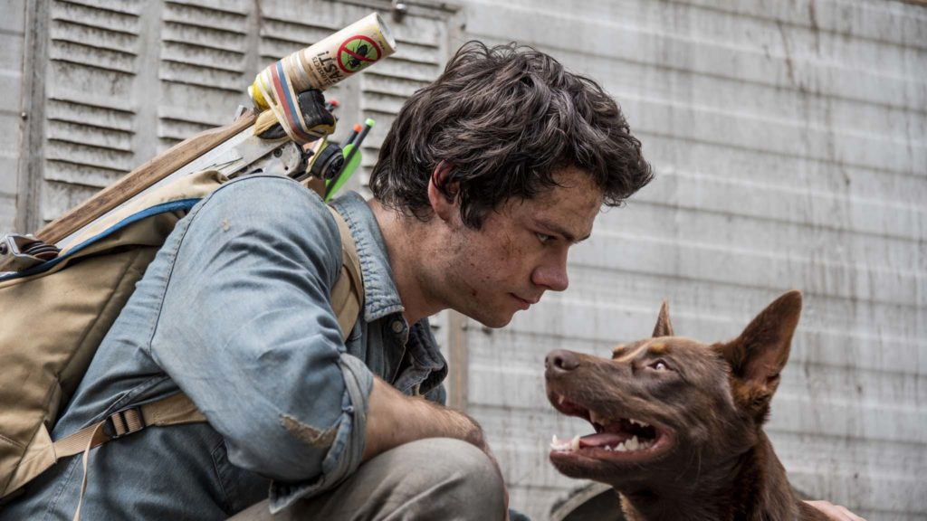 Dylan O'Brien as Joel Dawson and Boy the dog in Love And Monsters, directed by Michael Matthews. Photo: Jasin Boland. Copyright: 2019 Paramount Players, a division of Paramount Pictures. All Rights Reserved.